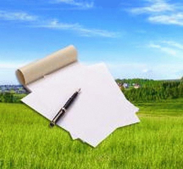 Акт осмотра земельного участка образец